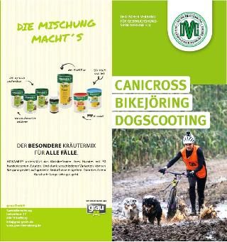 dvg flyer canicross hp titel